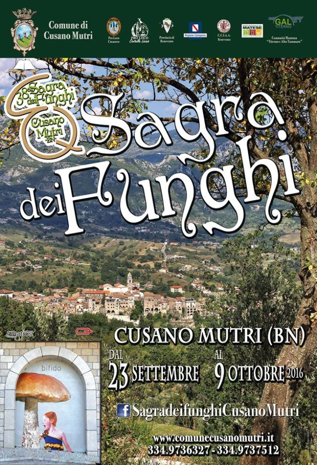 38ª Edizione della SAGRA DEI FUNGHI – CUSANO MUTRI (Benevento)